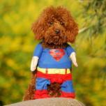 Костюм Супермена для собаки/кошки