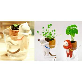 Самополивающиеся растения с забавными зверьками в стаканчиках